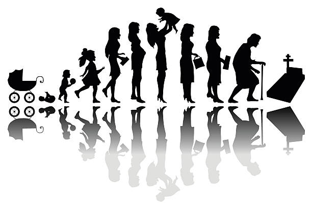 Time passing concept Time passing woman concept. Illustration of life from birth to death new life stock illustrations