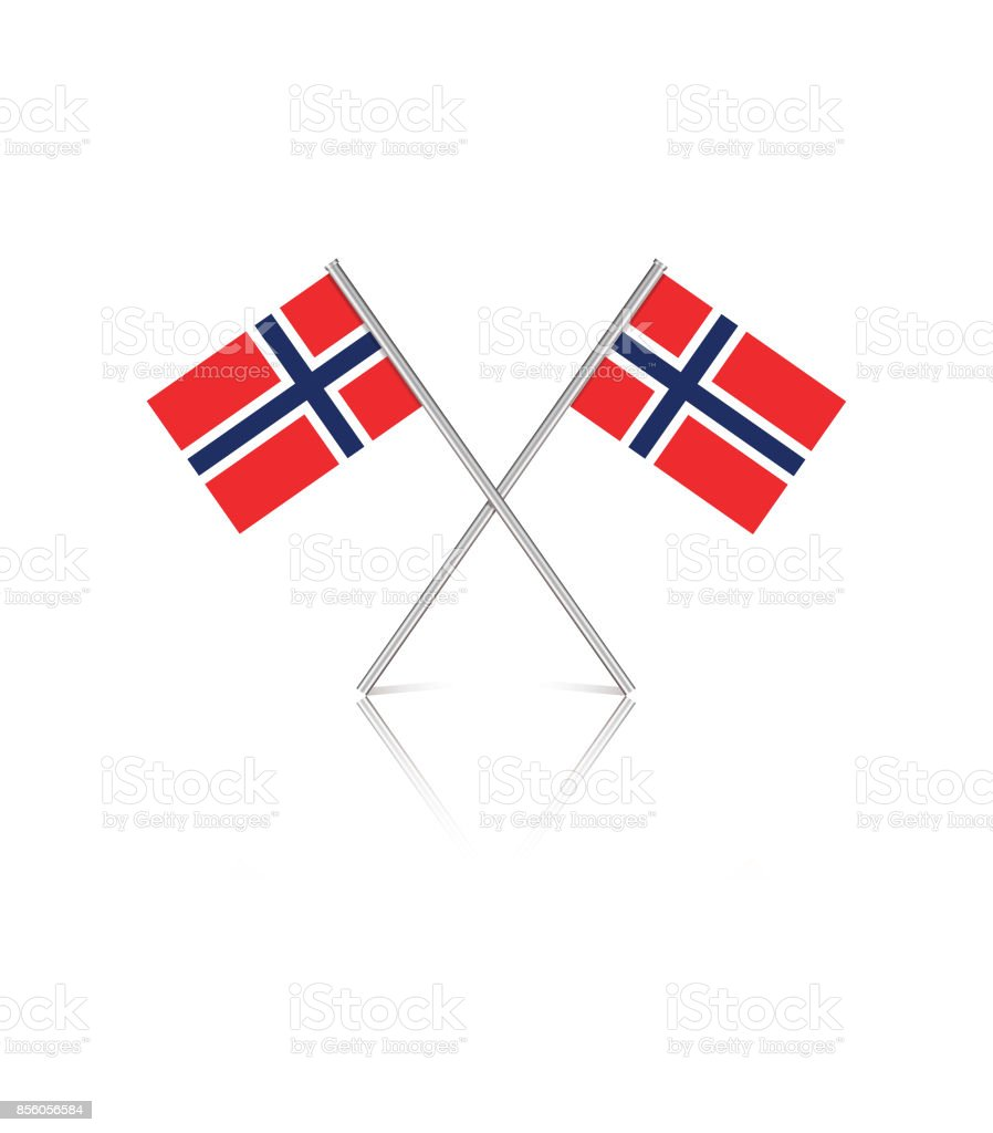 tiny norwegian flags on white reflective background stock vector