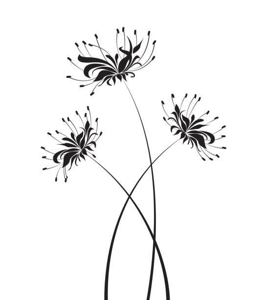 bildbanksillustrationer, clip art samt tecknat material och ikoner med skriva ut - amaryllis