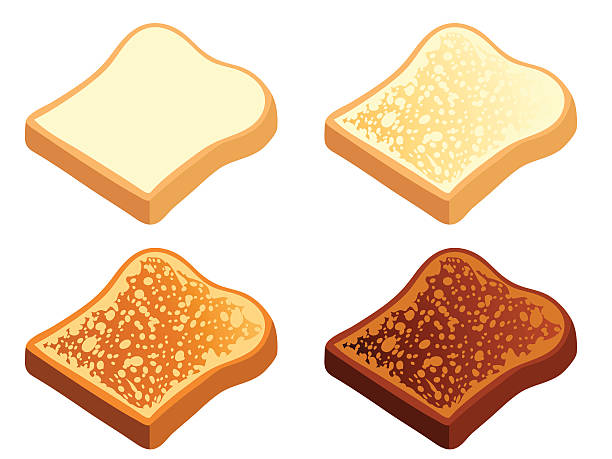 Toast Toast in various states of doneness: plain, light, dark, and burnt. Each slice is on its own layer for easy editing in your vector program. bread clipart stock illustrations