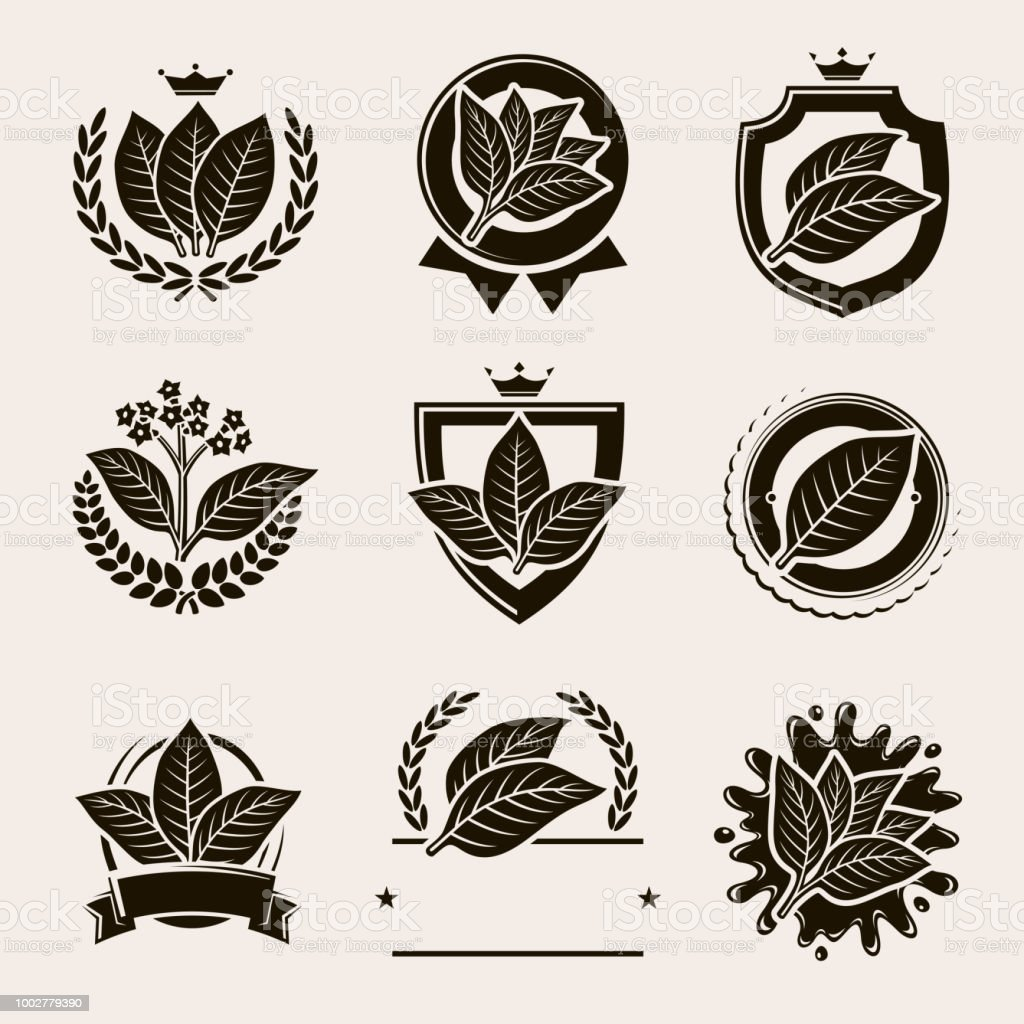 Tobacco leaf label and icons set. Vector vector art illustration