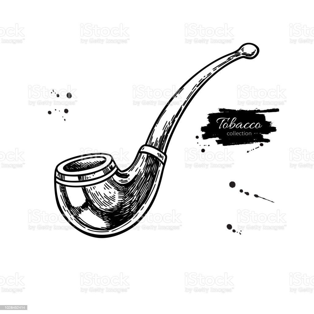 Tobacco Pipe Vector Drawing Hand Drawn Vintage Smoking Equipment