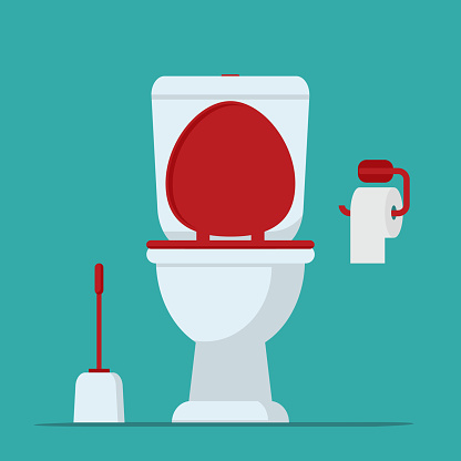 Toilet bowl, toilet paper and brush for toilet bowl.