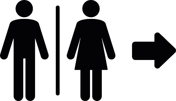 Toilet flat icon and arrow Toilet flat icon and arrow. PDF file included. female animal stock illustrations