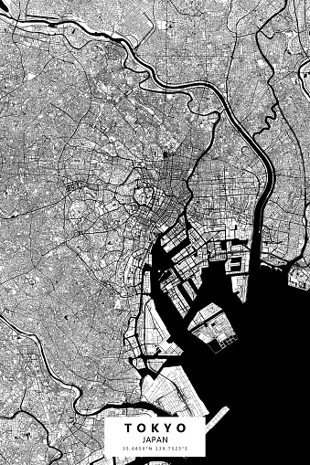 Tokyo, Japan Vector Map