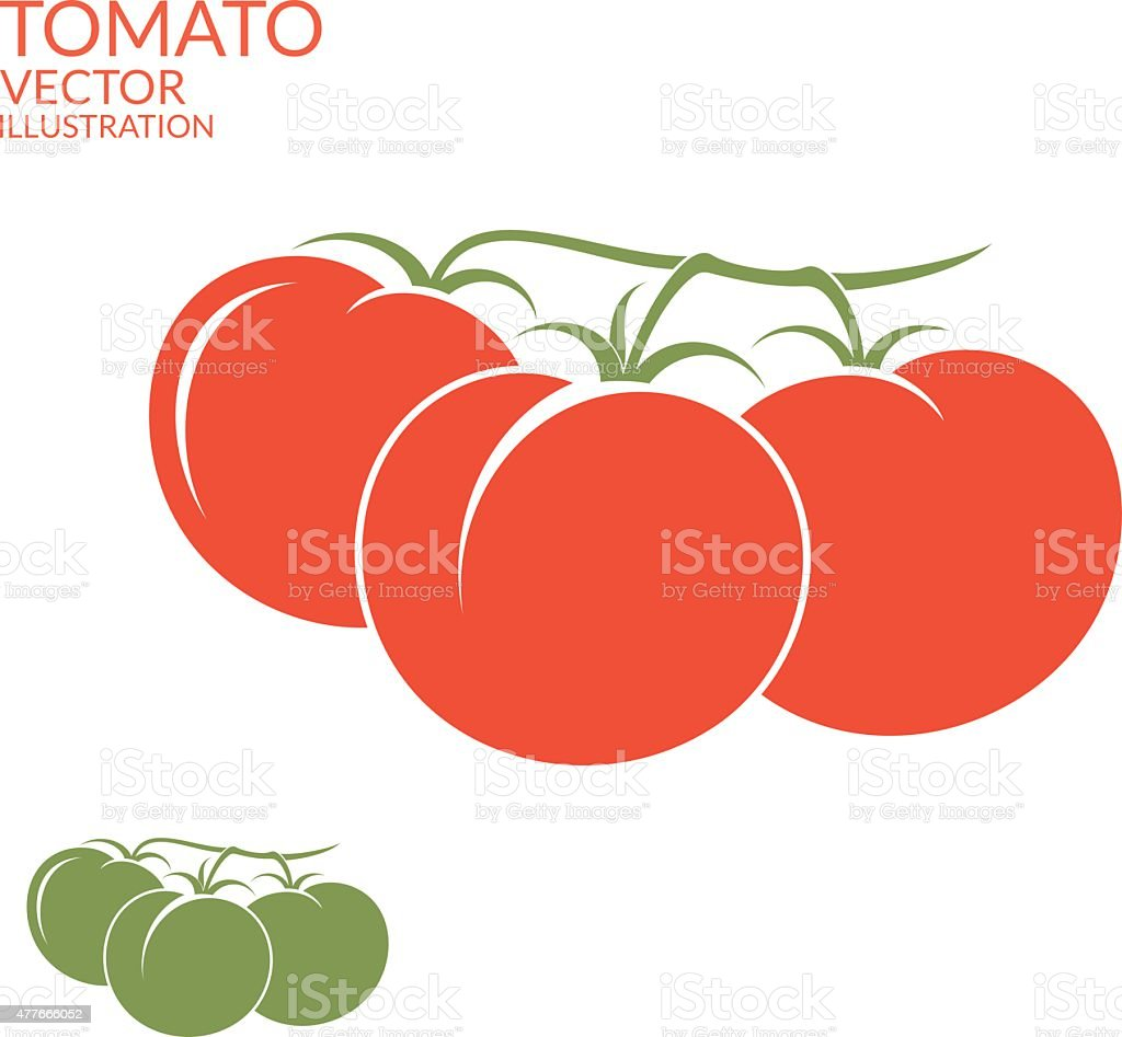 Tomato. Branch vector art illustration