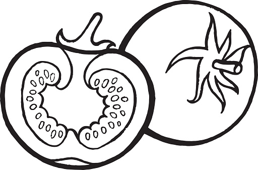 Tomato Coloring Page Hand Drawn Illustration For Adult And