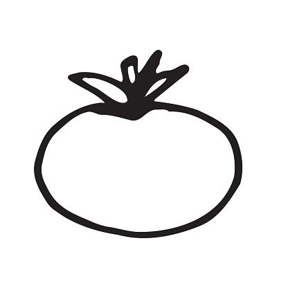 Tomato fresh ripe vegetable isolated on white background.