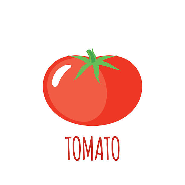 Tomato icon in flat style on white background Tomato in flat style. Tomato vector logo. Tomato icon. Isolated object. Vegetable from the farm. Organic food. Vector illustration. Tomato on white background tomato stock illustrations