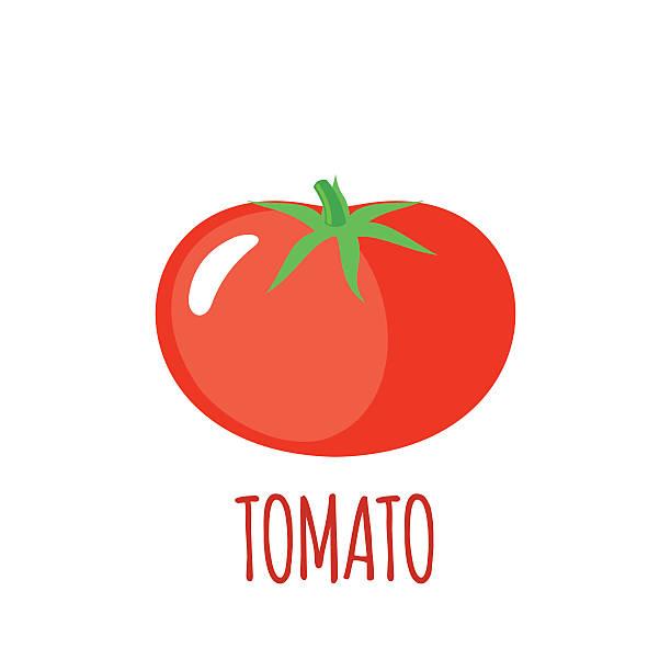 tomato icon in flat style on white background - tomato stock illustrations