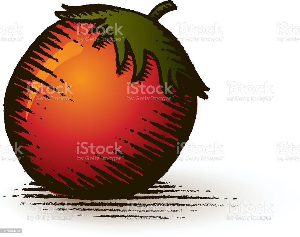 Tomato Illustration royalty-free tomato illustration stock vector art & more images of color image