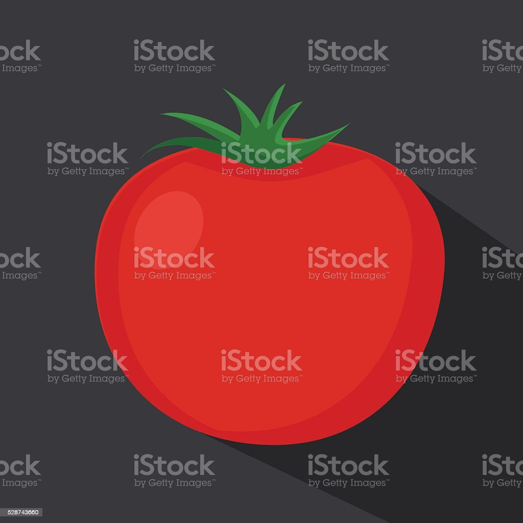 Tomato isolated single simple cartoon illustration vector art illustration