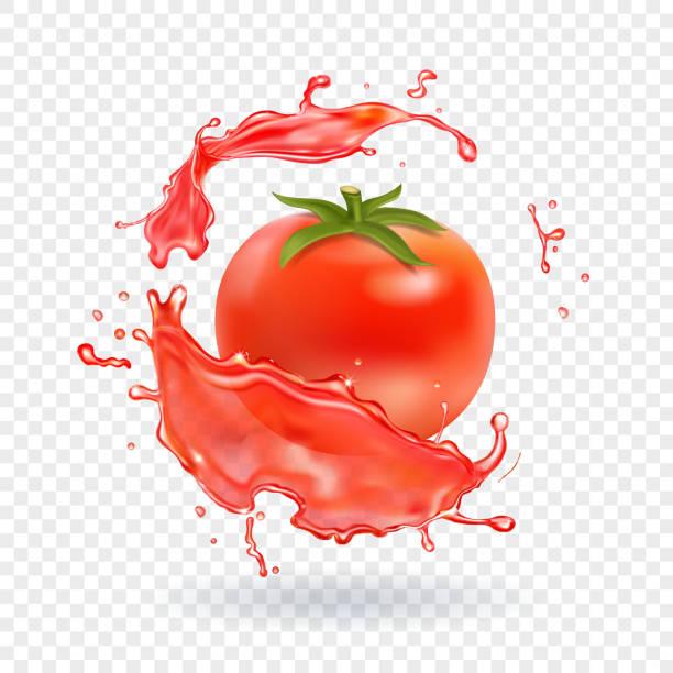 Tomato juice Fresh splash. Realistic icon Tomato juice fresh splash. Realistic vector icon. tomato sauce stock illustrations
