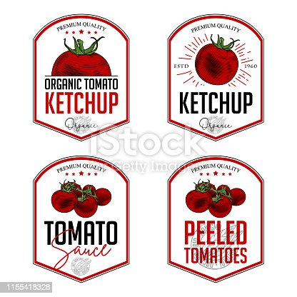 Vector hand drawn illustration of tomatoes in engraving technique. Vintage shield form templates for tomato sauce packaging.