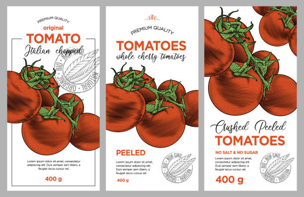 Tomato ketchup, sauce, juice badge label design set. Vector hand drawn illustration of ripe tomatoes in engraving technique. Stylish vintage templates for tomato sauce packaging. tomato sauce stock illustrations