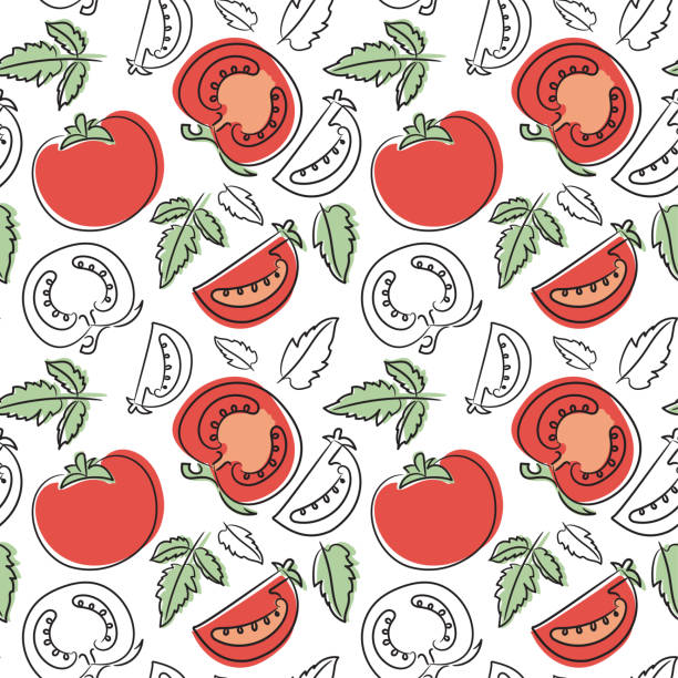 Tomato seamless pattern. Hand drawn fresh vegetables. Vector sketch background. Doodle wallpaper. Red and green print Tomato seamless pattern. Hand drawn fresh vegetables. Vector sketch background. Doodle wallpaper. Red and green print tomato stock illustrations