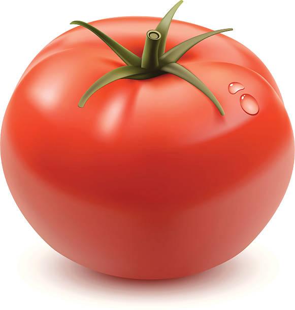 ilustrações de stock, clip art, desenhos animados e ícones de tomate - tomate