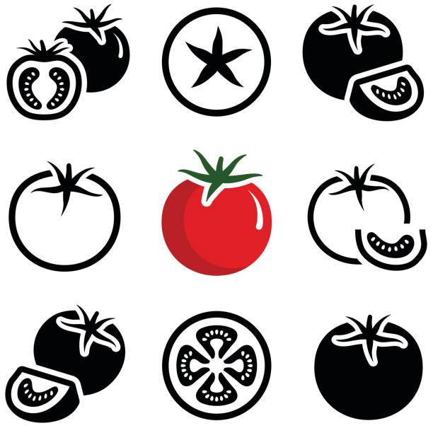 Tomato Tomato vegetable icon collection - vector outline and silhouette tomato stock illustrations