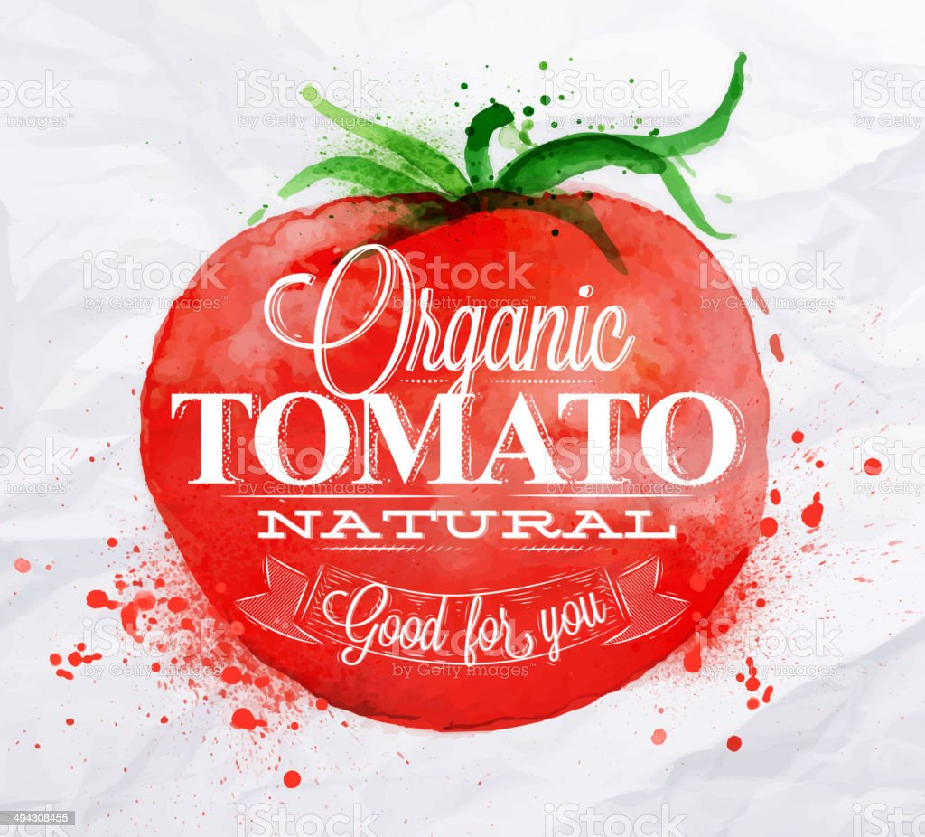 Tomato watercolor poster vector art illustration