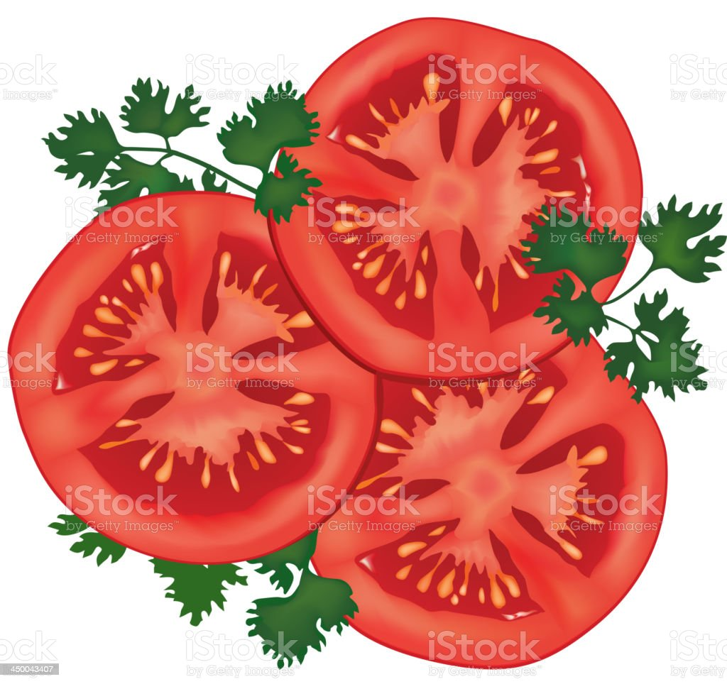 tomato with parsley isolated royalty-free stock vector art