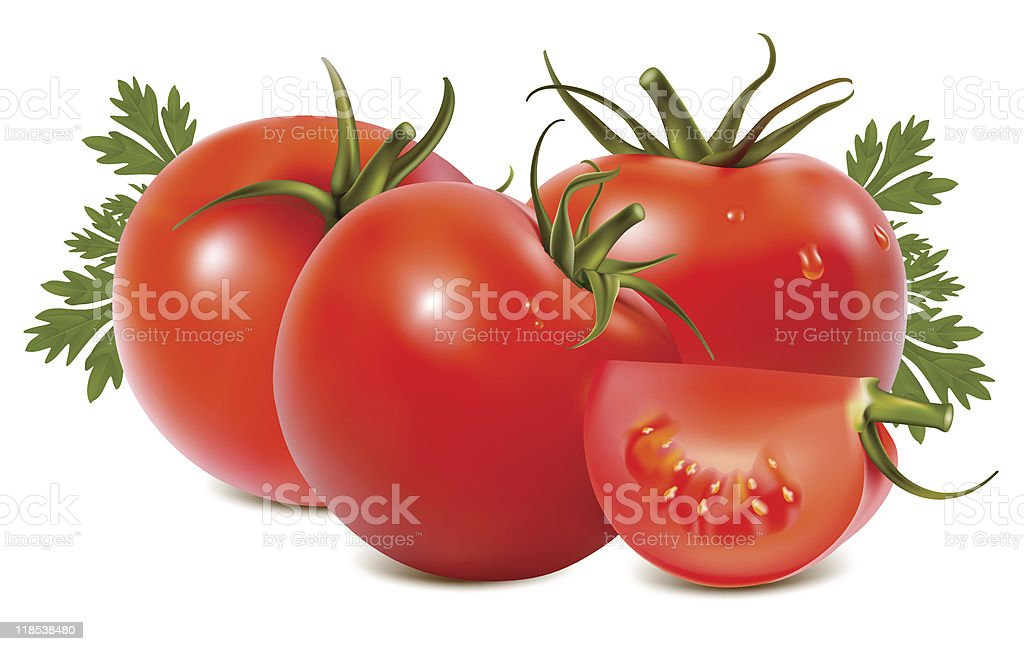 Tomato with water drops. royalty-free stock vector art