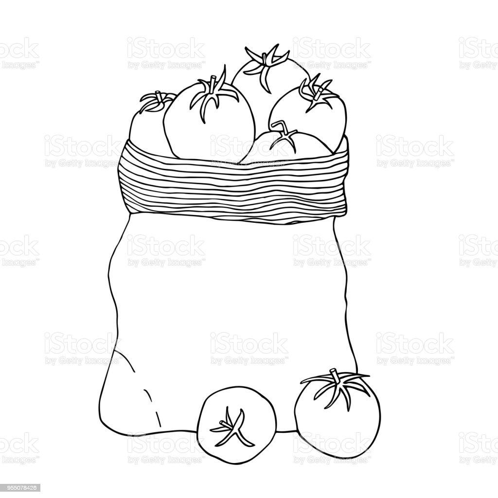 Ilustración De Tomates En Una Bolsa De Lona Dibujo De Vector