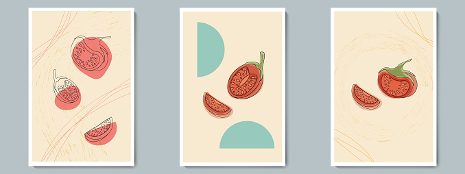 Tomatoes Set Poster. Fresh Sliced and Whole Vegetables. Hand Drawn Colorful Tomatoes with Texture.