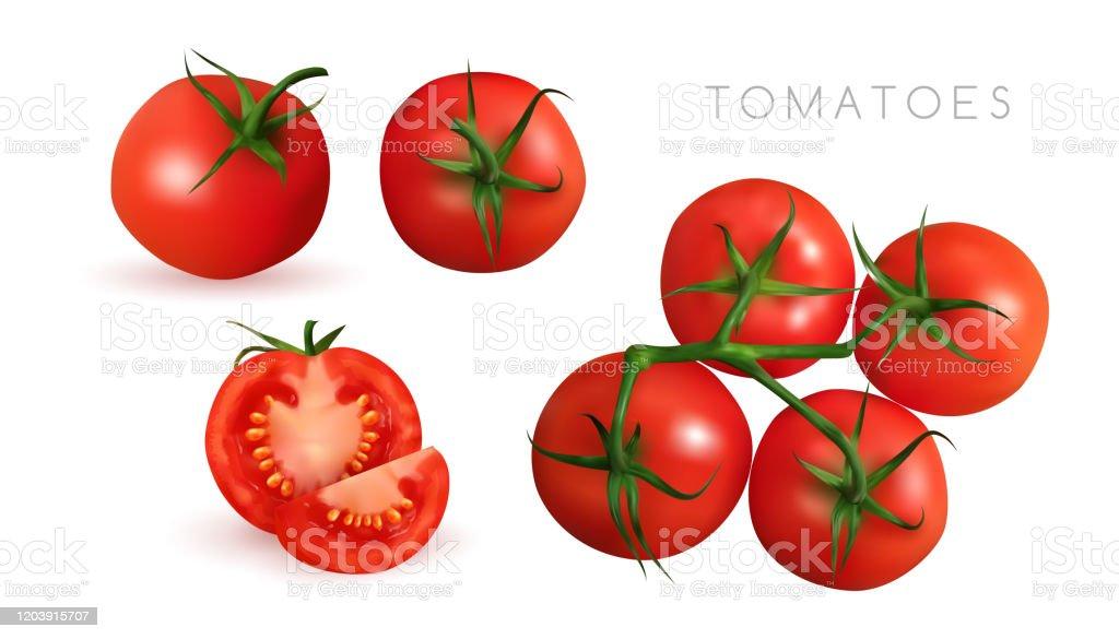 スライスとトマトリアルなベクトルイラスト白い背景に分離された生野菜をクローズアップ食べ物の静物コレクション みずみずしいのベクターアート素材や画像を多数ご用意 Istock