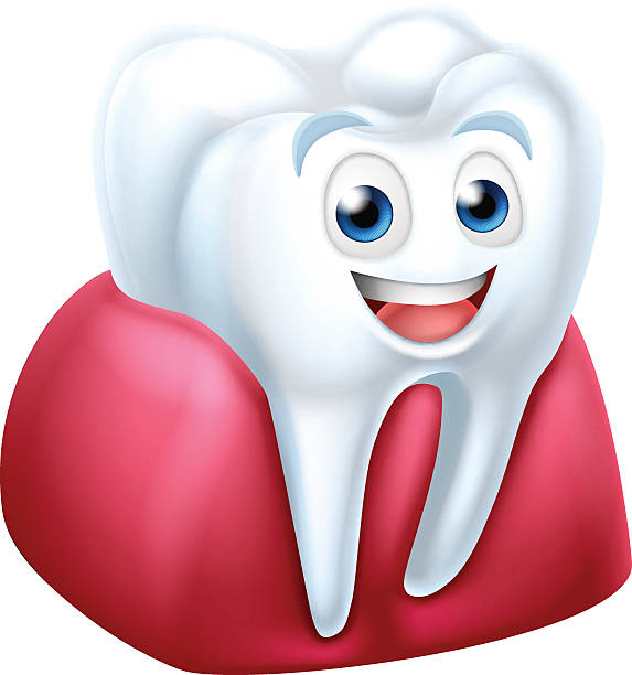 Royalty Free Happy Shiny Tooth Clip Art, Vector Images ...