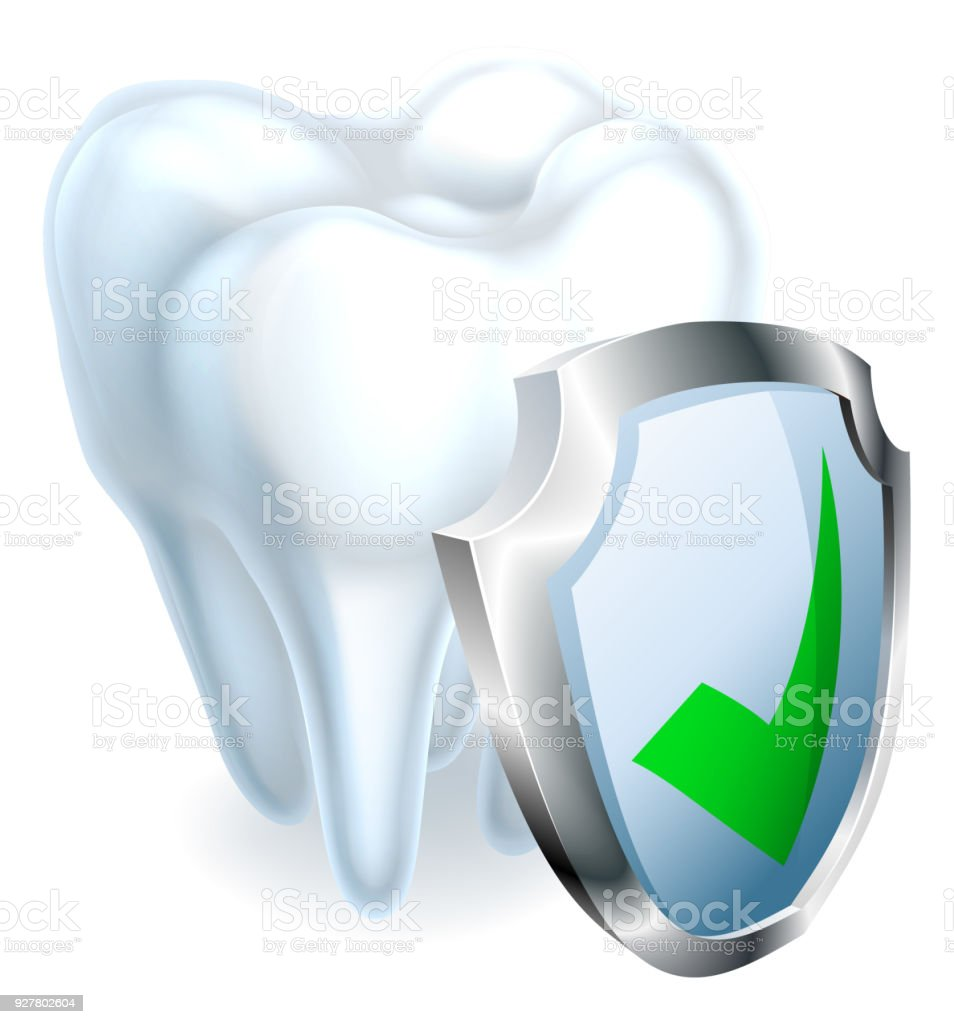 Tooth and Shield vector art illustration