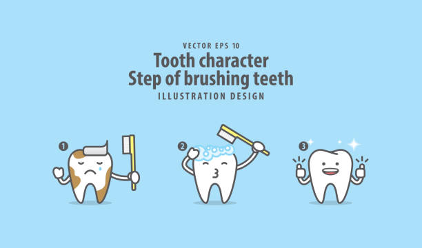 illustrazioni stock, clip art, cartoni animati e icone di tendenza di tooth character step of brushing teeth illustration vector on blue background. dental concept. - denti