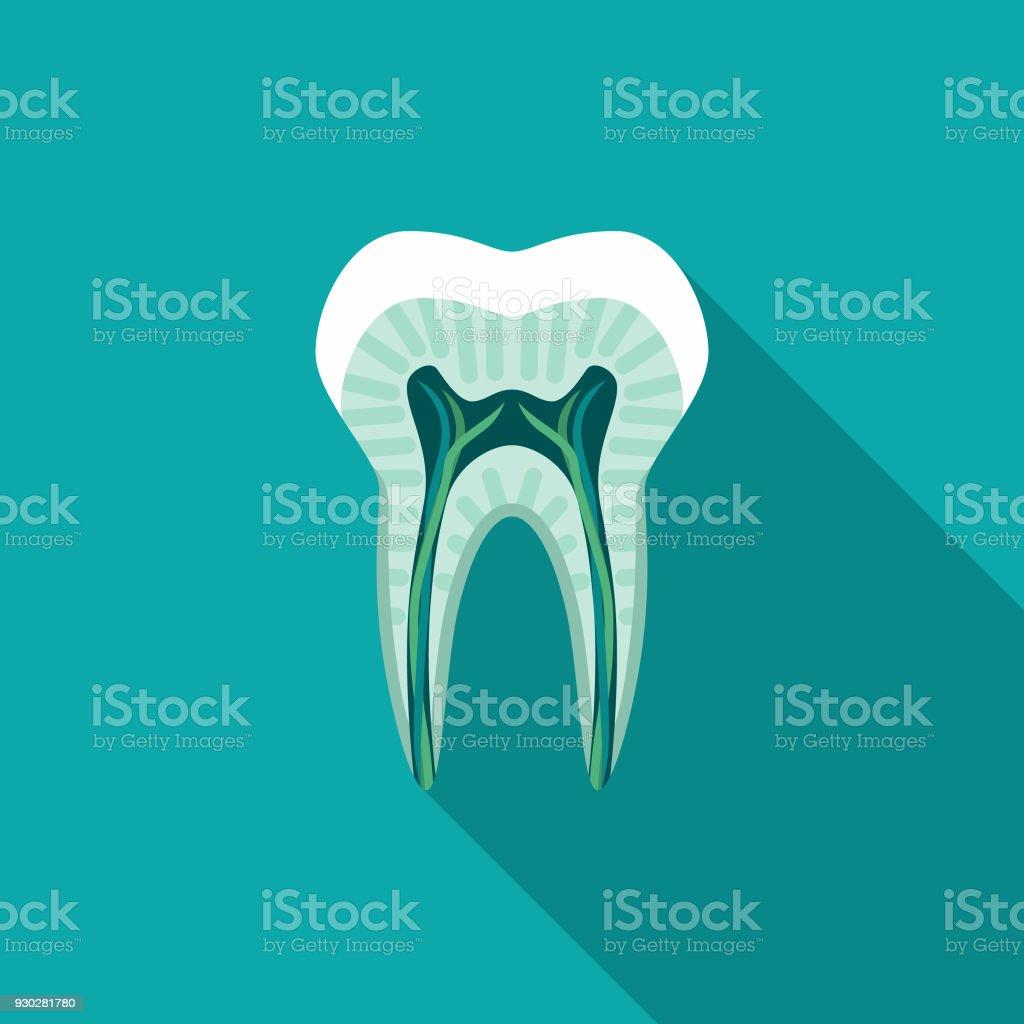 Ilustración de Icono De Dentista Diente Corte Diseño Plano Con ...