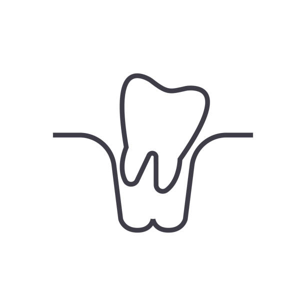 Line Art Extractor : Royalty free tooth extraction clip art vector images