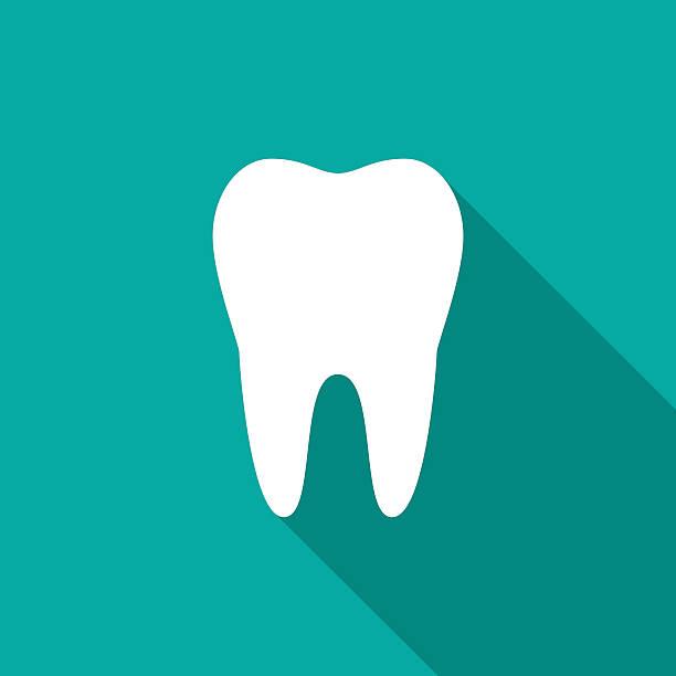 bildbanksillustrationer, clip art samt tecknat material och ikoner med tooth icon with long shadow. - molar