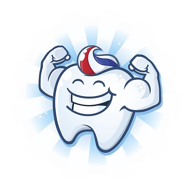 bildbanksillustrationer, clip art samt tecknat material och ikoner med tooth mascot muscle man dental cartoon character - tandsten