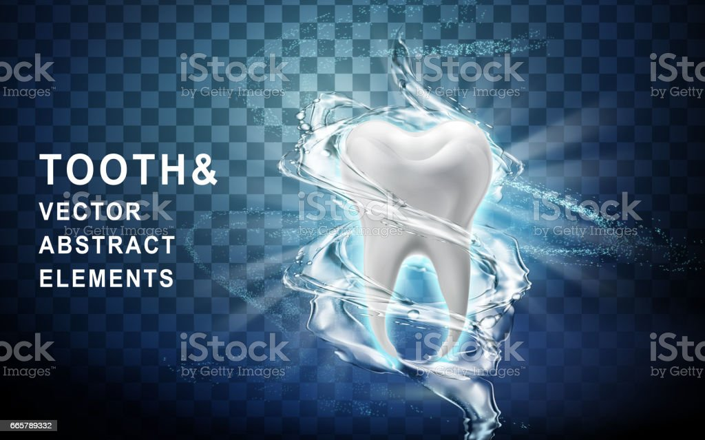 tooth model washed vector art illustration