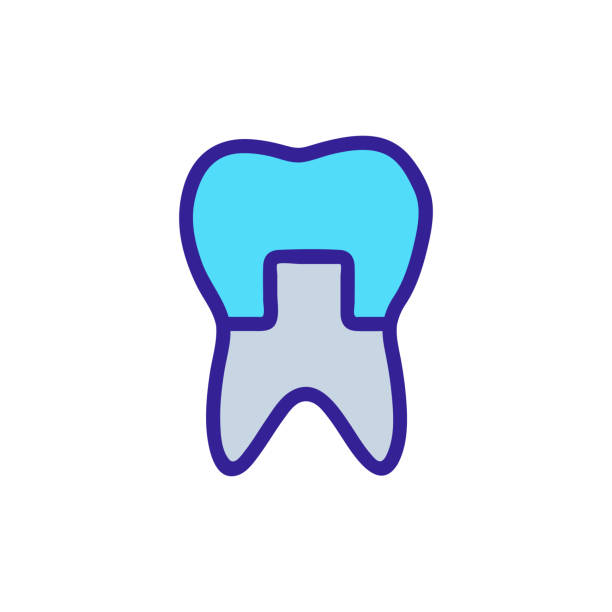 tooth restoration icon vector. Isolated contour symbol illustration tooth restoration icon vector. A thin line sign. Isolated contour symbol illustration streptococcus mutans stock illustrations