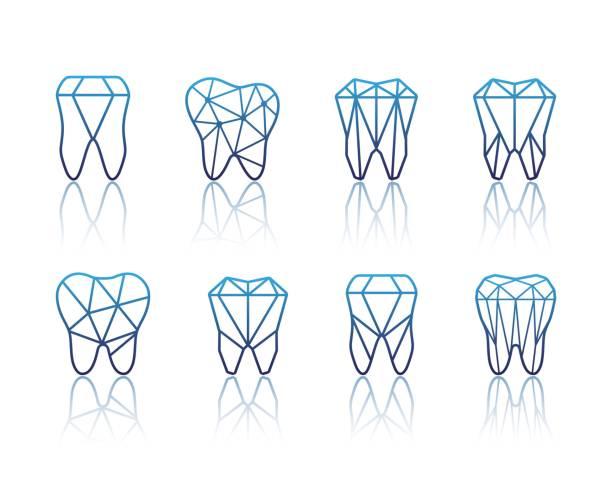 ilustraciones, imágenes clip art, dibujos animados e iconos de stock de diente símbolo conjunto. ilustración de vector - ortodoncista