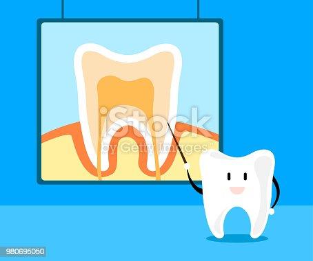 Zahn Lehren Zahnanatomie Im Cartoonstil Spaßkonzept ...