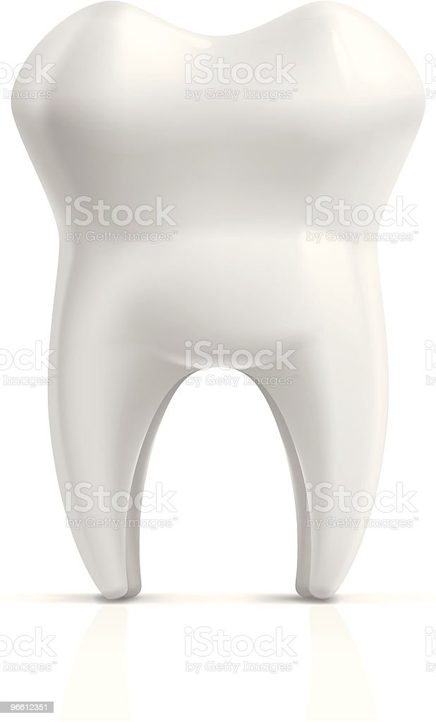 Tooth vector art illustration