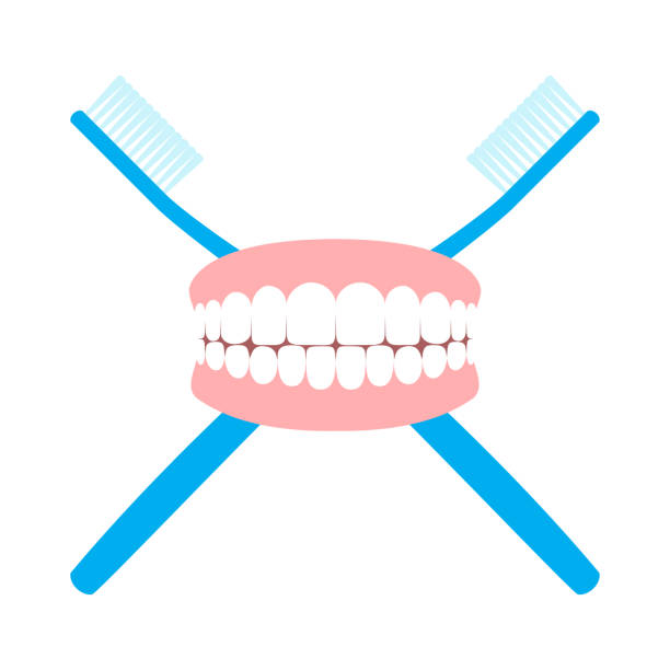 Toothbrushes And Teeth vector art illustration
