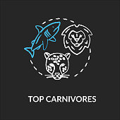 Top carnivores chalk RGB color concept icon. Wild animals. Food chain apex predators. Marine and land ecosystems idea. Vector isolated chalkboard illustration on black background