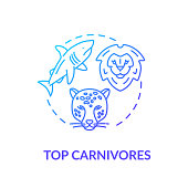 Top carnivores concept icon. Wild animals. Food chain apex predators. Marine and land ecosystems idea thin line illustration. Vector isolated outline RGB color drawing