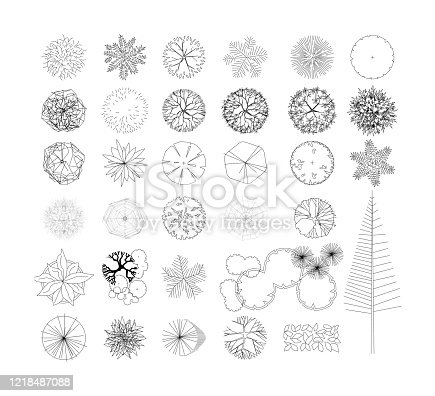 istock Top view and side view, set of graphics trees elements outline symbol for architecture and landscape design drawing. Vector illustration 1218487088