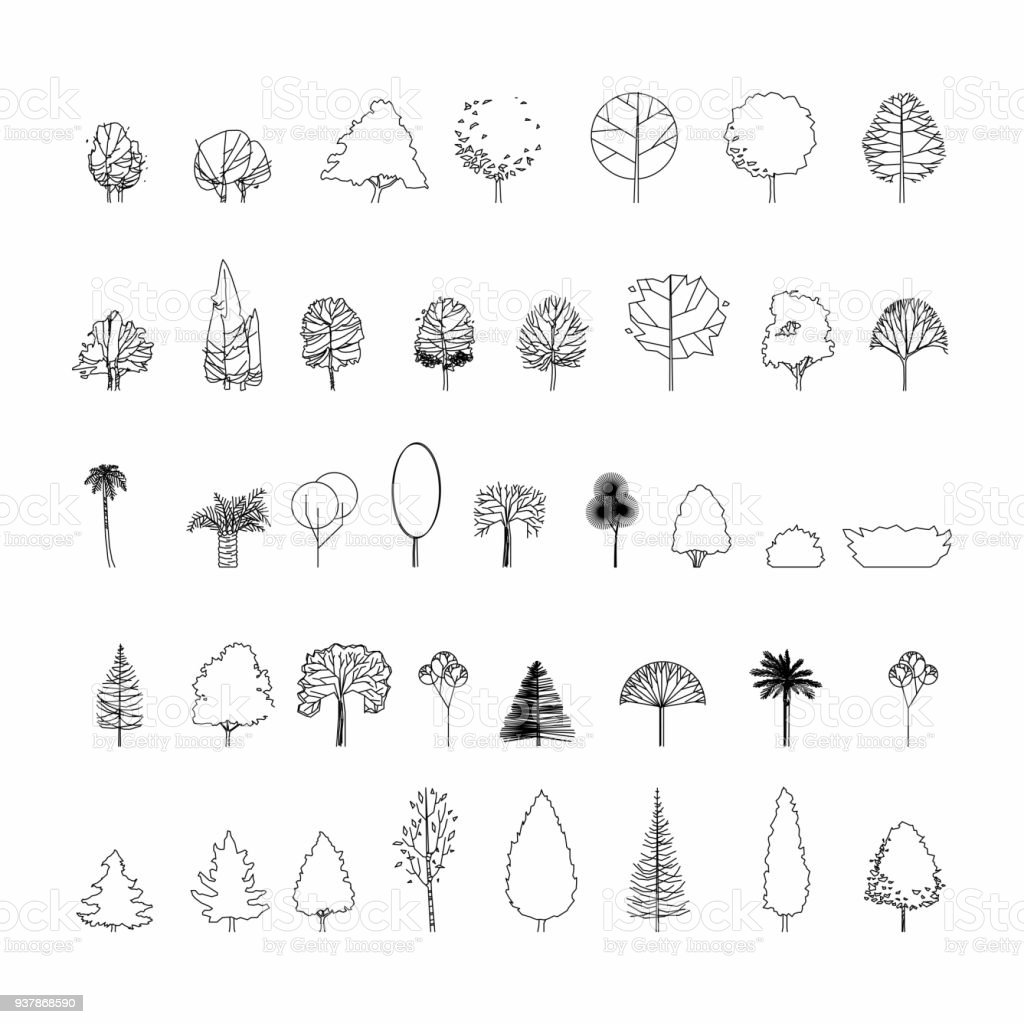 Top View And Side Set Of Graphics Trees Elements Outline Symbol For Architecture