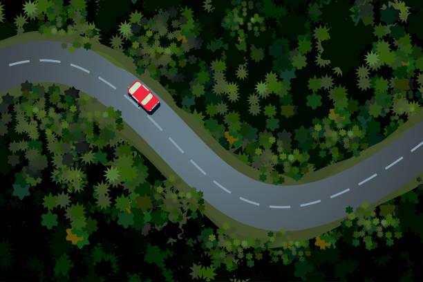 車と森林道路の上面図。田舎のハイウェイ、美しい風景。休日旅行ベクトル漫画のイラスト。 - 森林 俯瞰点のイラスト素材/クリップアート素材/マンガ素材/アイコン素材