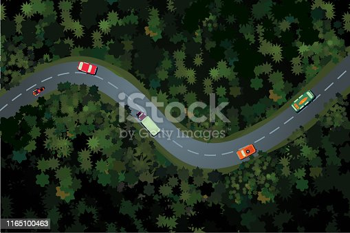 Top view of a forest road with car. Holidays travel vector cartoon illustration. Rural highway, beautiful landscape.