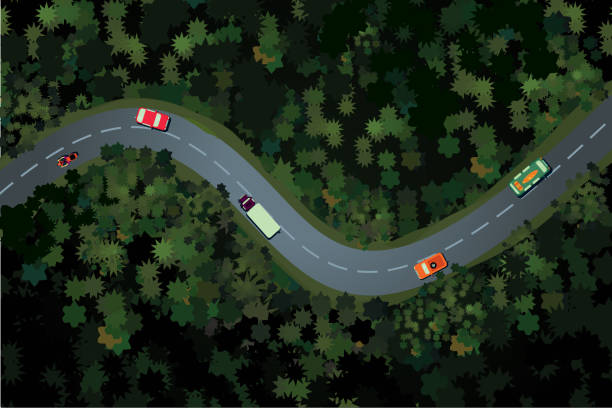 Top view of a forest road with car. Rural highway, beautiful landscape. Holidays travel vector cartoon illustration. Top view of a forest road with car. Holidays travel vector cartoon illustration. Rural highway, beautiful landscape. aerial view stock illustrations