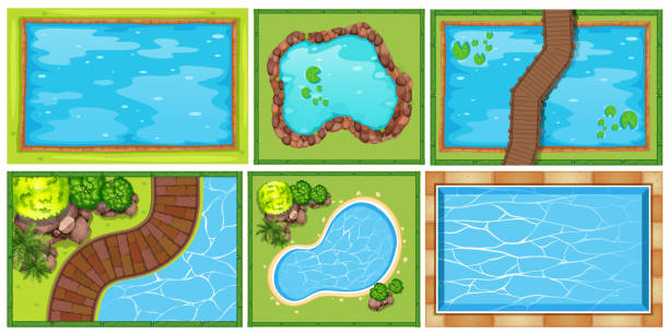 A Top View of Pond A Top View of Pond illustration pond stock illustrations