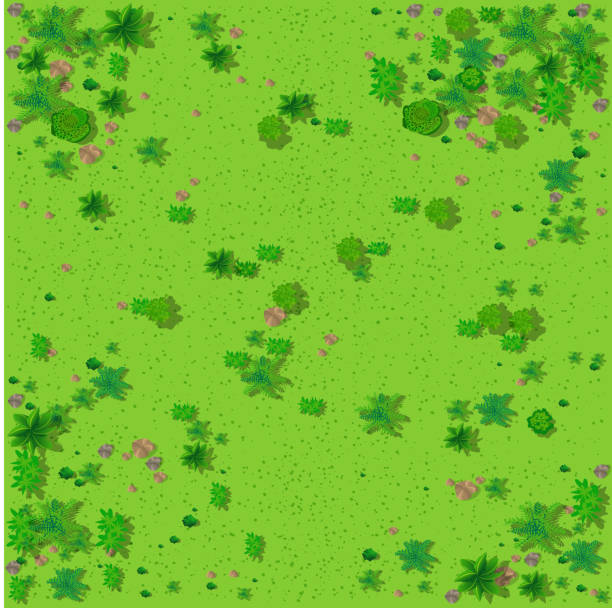 Top view of the countryside Top view of the countryside with forest, grass with stones and trees aerial view stock illustrations